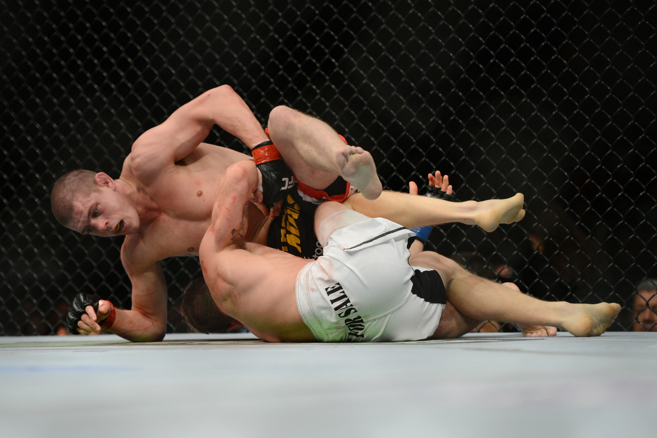 Mainstream Mixed Martial Arts Leads To Decline In Sponsorship Dollars